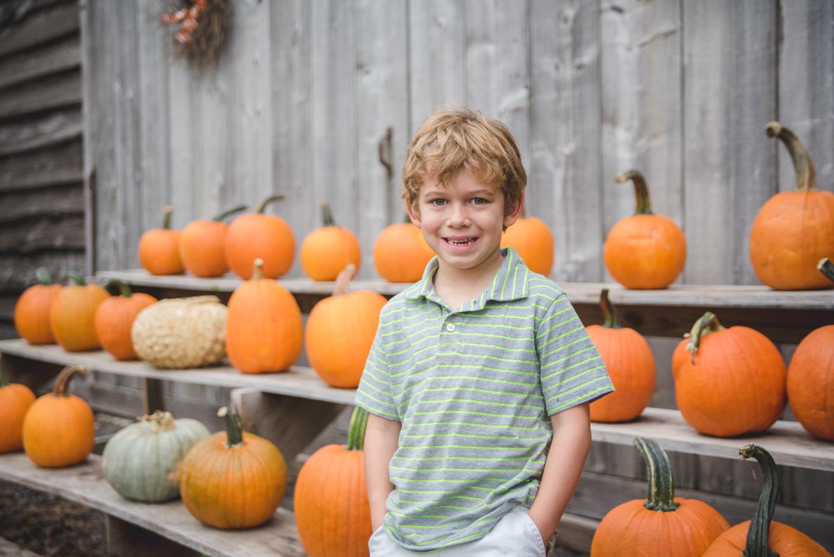 Collegeville fall photos collegevill pa photographer pumpkin patch photos
