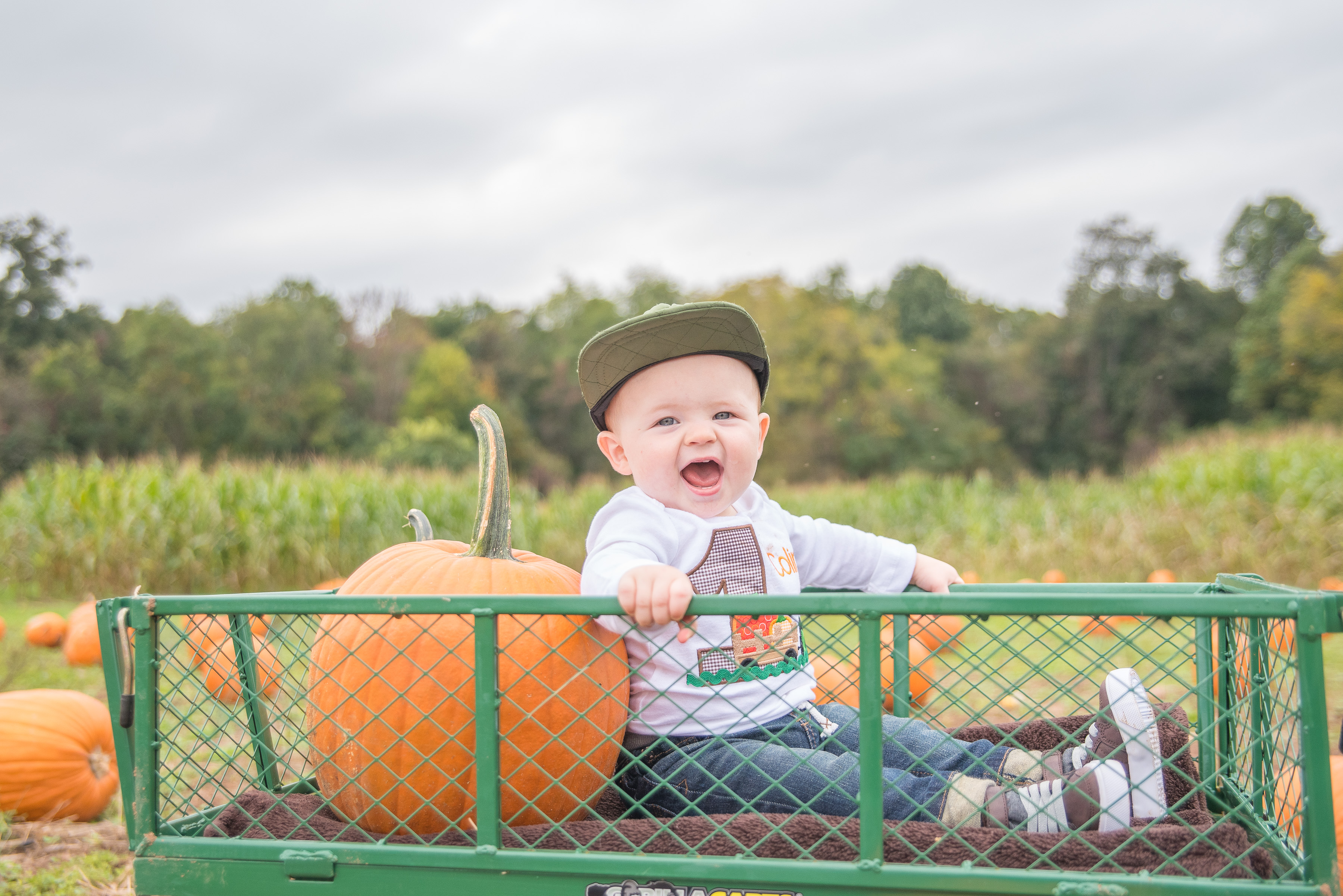 pumpkin patch photos fall sessions in pottstown pa